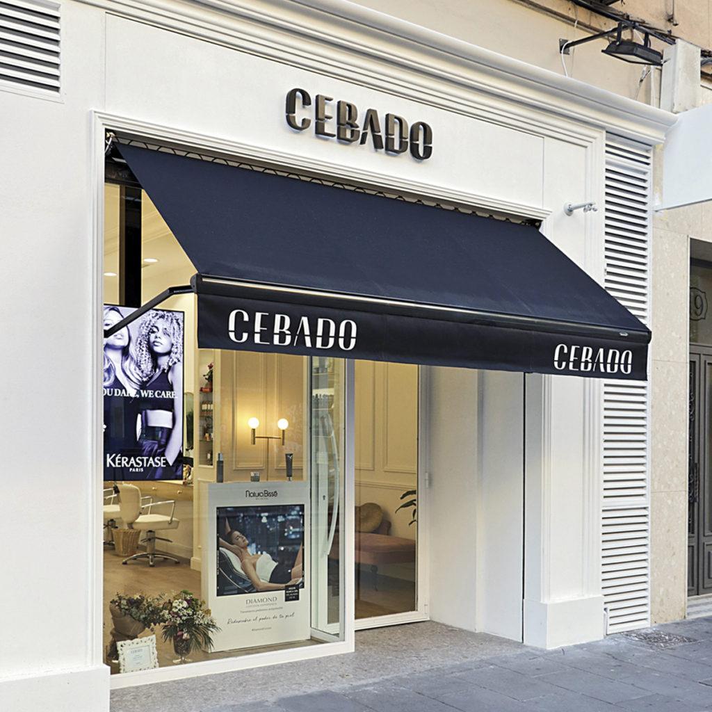 Reforma local comercial Zaragoza- Cebado2